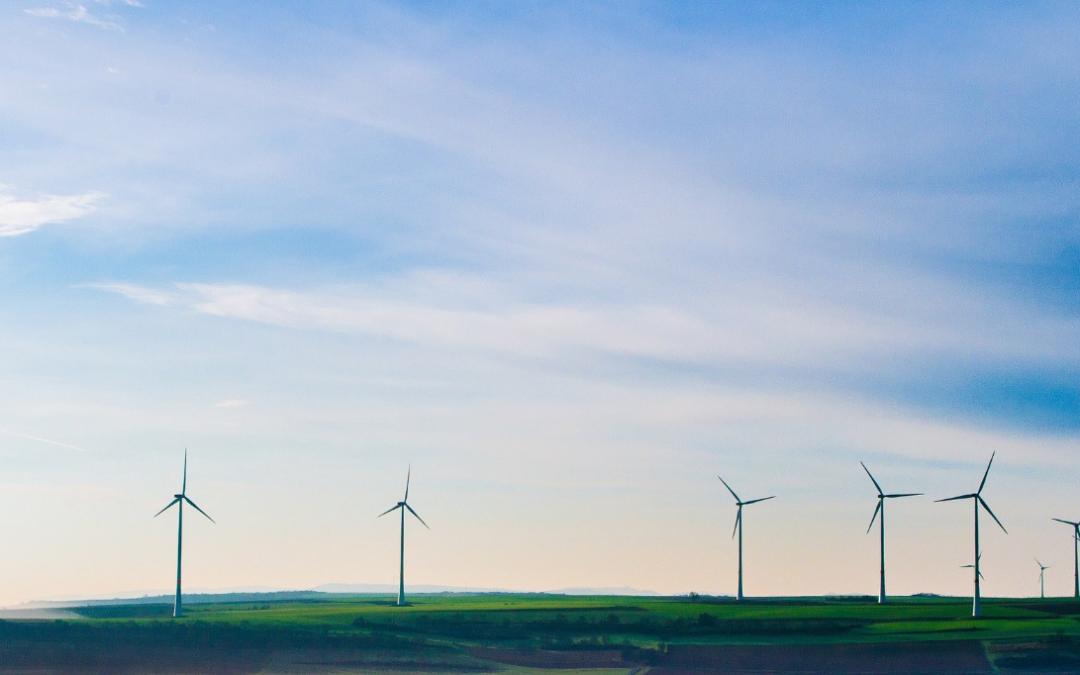 Neutralidade Climática – Desafios e Oportunidades